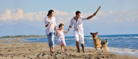 Urlaub mit hund nordsee ferienwohnungen ferienh user for Last minute urlaub nordsee